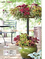 Better Homes And Gardens 2011 05, page 126