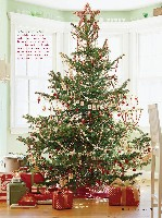 Better Homes And Gardens Christmas Ideas, page 172